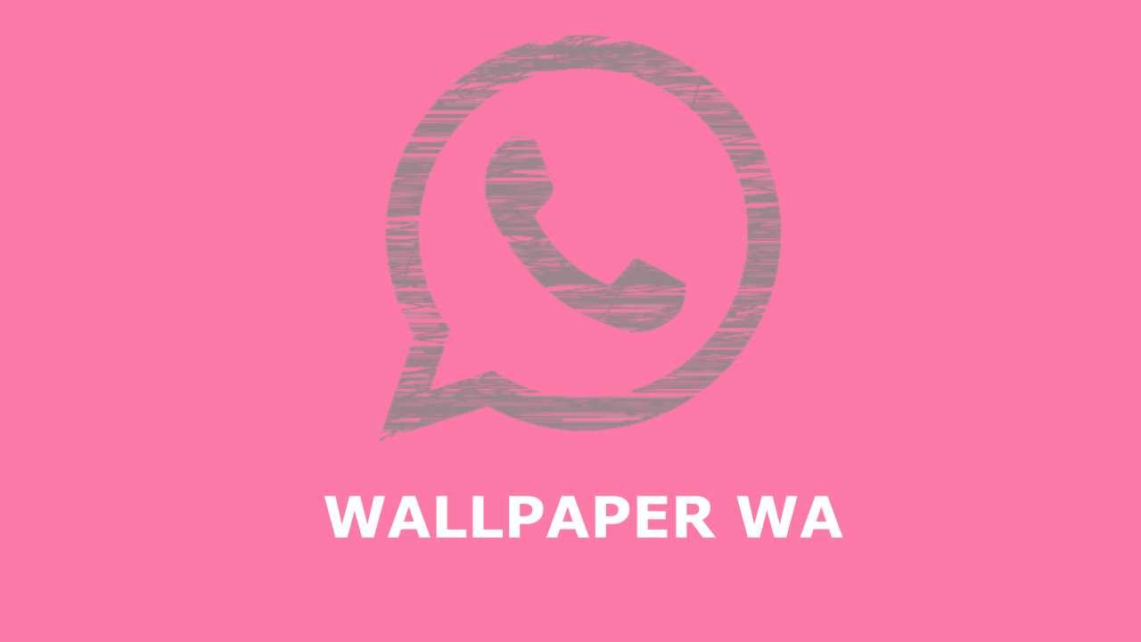 Download Wallpaper Wa Lucu Dan Cara Menggantinya Kelasteknologi